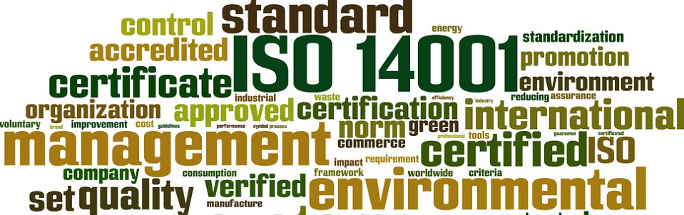 eNVIRONMENTAL STANDARDS SOUTH WALES