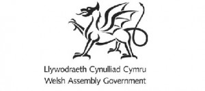 Welsh Assembly Govt logo o2